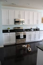 interesting classic black and white kitchen with furniture and dog poses on shine floo and cabinet