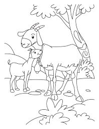 Small Picture Goat and Kid coloring page Download Free Goat and Kid coloring