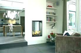 two sided gas fireplace corner insert double inserts 2 log ace a