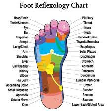 Acupuncture Foot Chart Details About Acupressure Insoles Detox Slim Magnetic Foot Acupuncture Point Therapy Insole