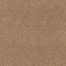 home decorators collection carpet sample shining moments i s