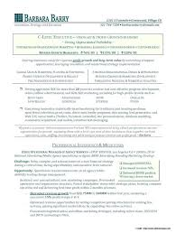 Executive Resume Writing Ideas Collection Executive Resume Writer Charming Writing