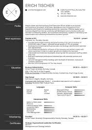 Resume Examples By Real People Ceo Resume Example Kickresume
