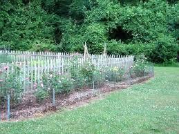 keep dogs out of garden keep dogs out of garden vegetable garden fence ideas deer new keep dogs out of garden