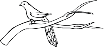 Small Picture Pigeon Stands On Branch coloring page Free Printable Coloring Pages