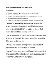 holes essay rabbit holes and imaginary worlds the life of mimi  holes book review s4 holes notes and sample essay