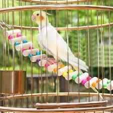 2019 4 styles birds toys large parrot toys drawbridge bridge wooden singing atiel pet toy accessories from travellingdh 2 2 dhgate