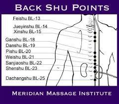 Back Shu Points Acupuncture Meridian Massage Acupressure