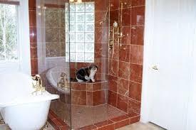 Bathroom Design Contractors In Colroado Springs Why Remodel?