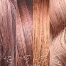 Image Result For Rose Gold Hair Color Chart Gold Hair