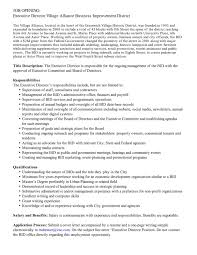 Non Profit Executive Director Resume Samples Of Resumes Non Profit