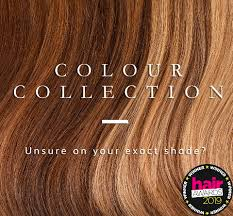 Hair Length Sample Chart Beauty Works Hair Colour Chart