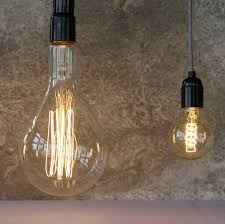 Giant Light Bulb Lamp Personalised Insects Giant Filament Light Bulb By The Glass Yard