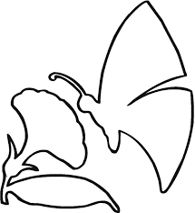 Outline Drawing Of Flowers Butterfly The Flower Outline Coloring ...