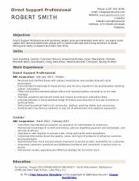 Professional Resume Objective Direct Support Professional Resume Samples Qwikresume