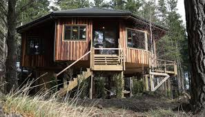 Grand Designs New Zealand Log House Grand Designs Nz 2018 The Tree Home Newshub