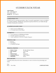 curriculum template cv curriculum vitae template from how to write cv how to write