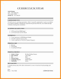 Cv Curriculum Vitae Template From How To Write Cv How To Write