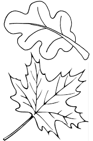 two fall leaves coloring page free printable pages