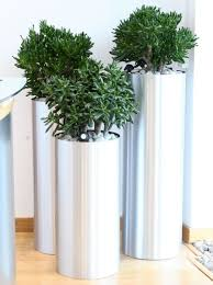 office flower pots. office plants great pot u0026 tropical for your offices flower pots a