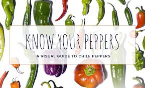 Pepper Level Chart Cayenne Habanero Poblano Serrano Know Your Chile Peppers