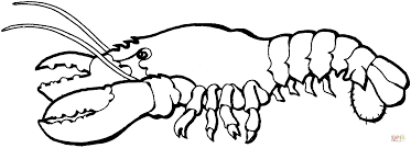 Small Picture Lobster 1 coloring page Free Printable Coloring Pages