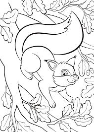 Kleurplaat Eekhoorn 35 Leuke Eekhoorn Kleurplaten Tijd Met Kinderen