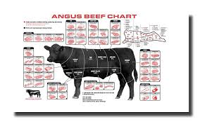 Meat Chart Handtao Beef Cuts Of Meat Butcher Chart Canvas Wall Art Beautiful Picture Prints Living Room Bedroom Home Decor Decorations Unstretched And No Framed