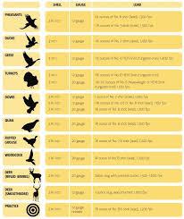 Shot Size Chart For Game 13 Competent Shotgun Pellet Sizes Chart