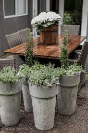best  large outdoor planters ideas on pinterest  big planters