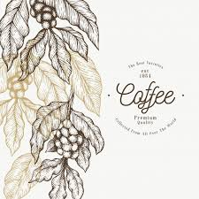 Black and white with line art. Coffee Tree Branch Template Coffee Art Print Coffee Illustration Coffee Tree