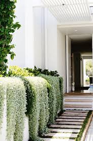 Best 25+ Hanging plants ideas on Pinterest   Hanging plant diy, Diy hanging  planter and Macrame plant hanger diy