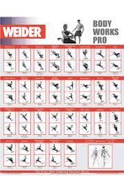 Weider Pro 6900 Workout Chart Weider Workout Chart Pdf Sport1stfuture Org