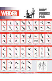 Weider Workout Chart Pdf Sport1stfuture Org