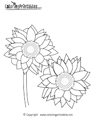 Sunflower Coloring Page A Free Nature Coloring Printable