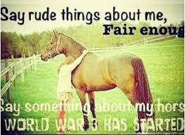 Barrel Racing Quotes Fascinating Thoroughbred Horse Racing Quotes On QuotesTopics
