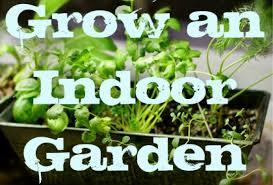 apartment vegetable garden.  Garden My Apartment Garden How To Grow An Indoor Herb Or Vegetable Garden Intended E