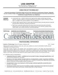 Director Resume Sample It Director Resume Samples In Resume Of It