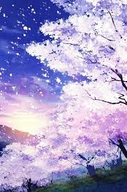 pretty white blossoms with purple and blue tints and background