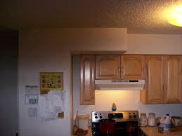 Painting My Kitchen Cabinets 41092d1241578984 Ideas What Color Paint My Kitchen Kitcheng