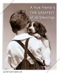 Dog Best Friend Quotes Beauteous Dogs R Friends Forever MY DOG MY TRUE BEST FRIEND