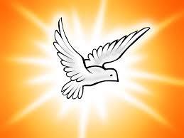 Resultado de imagem para pomba do espirito santo