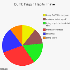 Stupid Pie Charts Dumb Friggin Habits I Have Dumb Dumber Pie Charts Donut