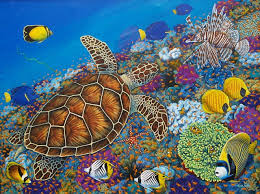 Image result for sea life