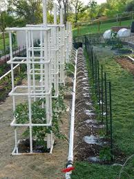 this tomato cage is a very sy one it starts with a large pvc pipe that you actually attach the tomatoes to