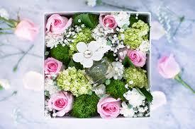 vday flower 8