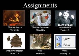 essay types and topics year 7th