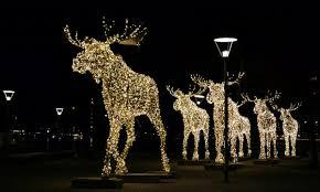 Moose Christmas Lights