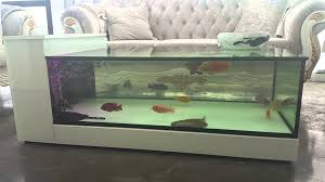 what is so special about fish tank coffee table fun