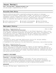 Data Entry Resume Sample Example Cover Letter For Freelance Data